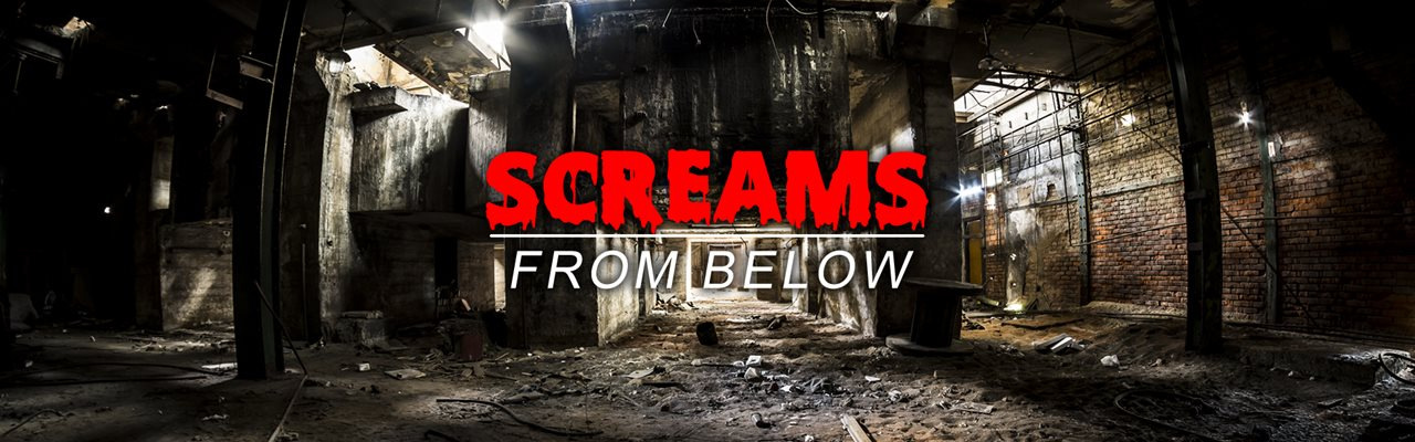 Screams from Below Houston Escape Room
